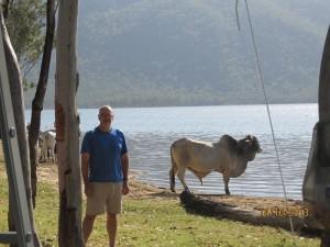 That's alotta bull!