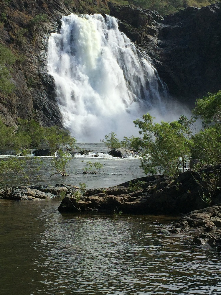 The Bloomfield Falls - breathtaking! I can't imagine what they'd be like in the wet season.