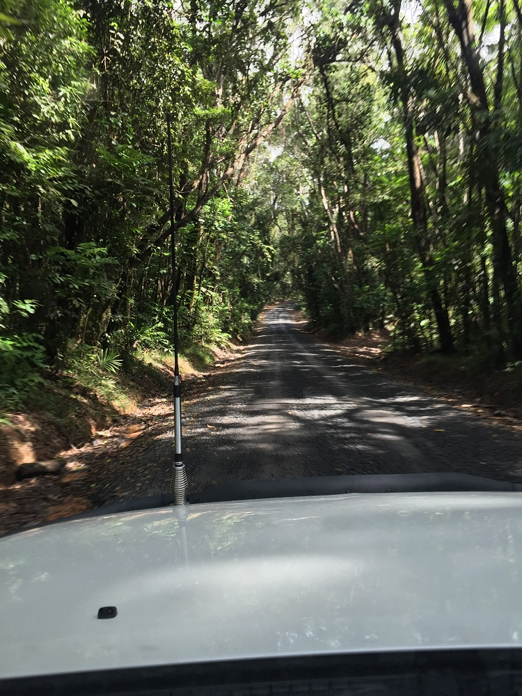 Such a pretty drive!