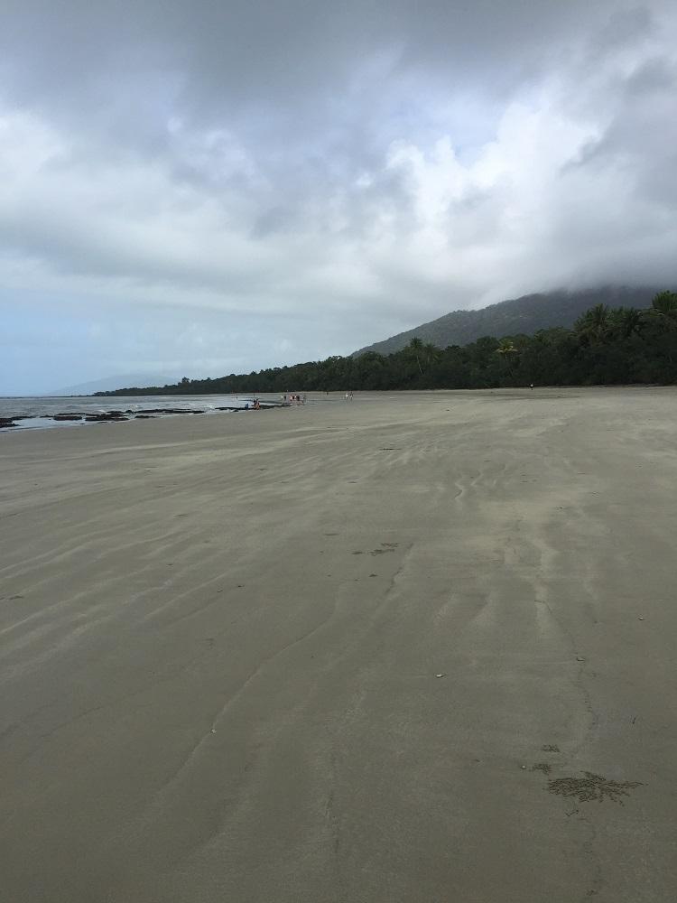 Daintree Beach