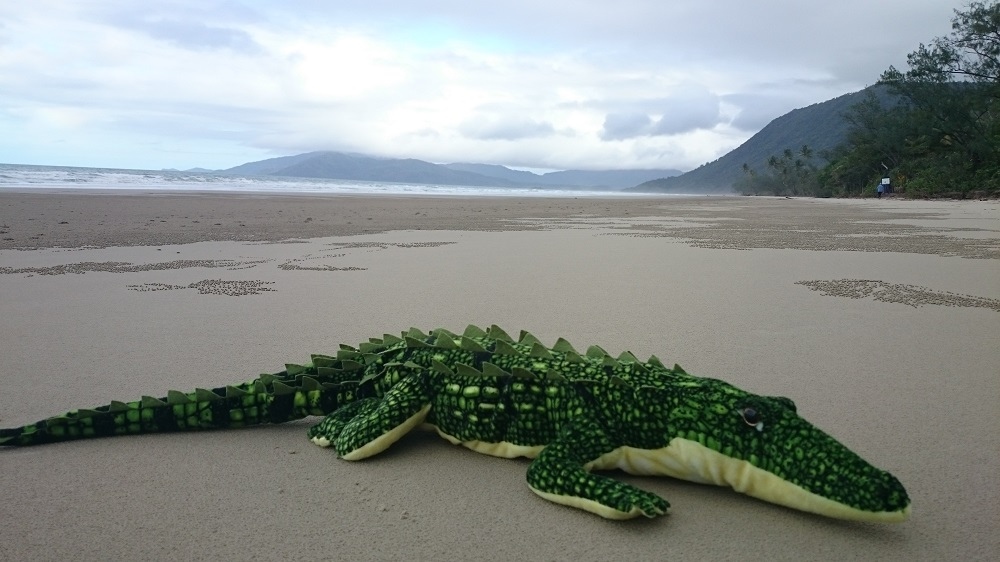 Oh no there's a croc on the beach!! Hang on, it's only Tony!