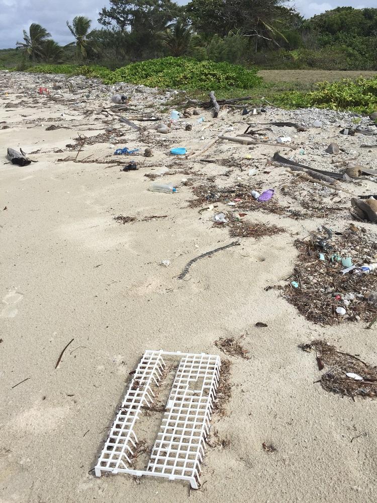 Wooo - look at all that rubbish.