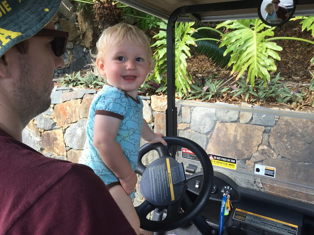 Hey Dad, I'll show you how to drive a golf buggy. You start by blowing the horn.