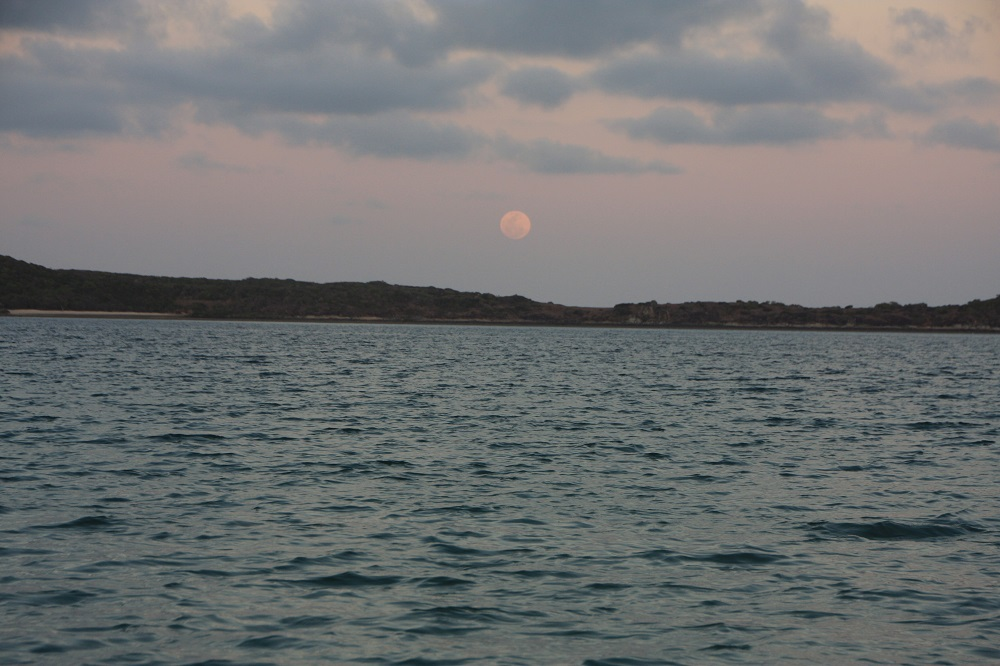 Once more we get to see a full moon rising on this trip - our 3rd so far. This time it's over Lupton Island and we're anchored in Waite Bay on Hazelwood Island. No one else here; an idyllic tropical experience.