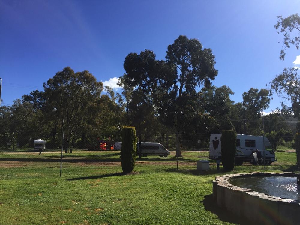 An excellent campsite between the First Fleet Memorial Gardens and the Quirindi River.