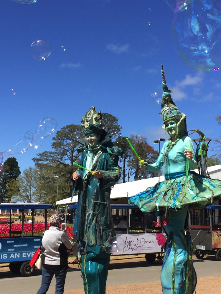 Huge bubbles, from these two stilted street performers. Floriade.