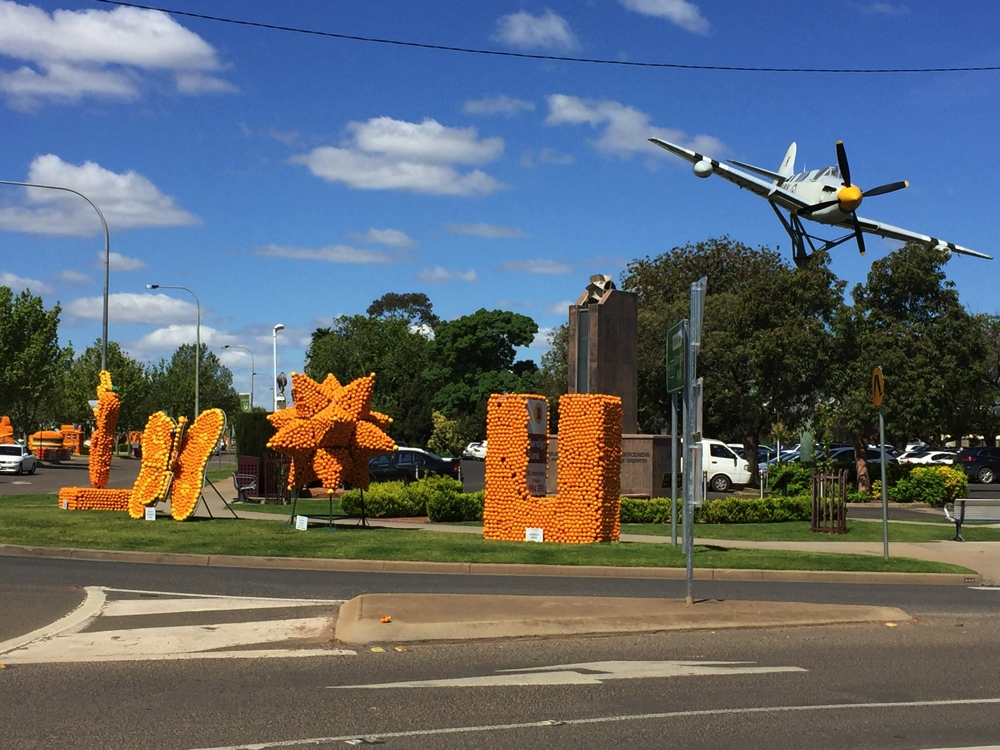 An amazing array of orange sculptures greeted us in Griffith. You can see they stretch from the Information Centre, just out of the photo to the right, all the way down the street, and then some!