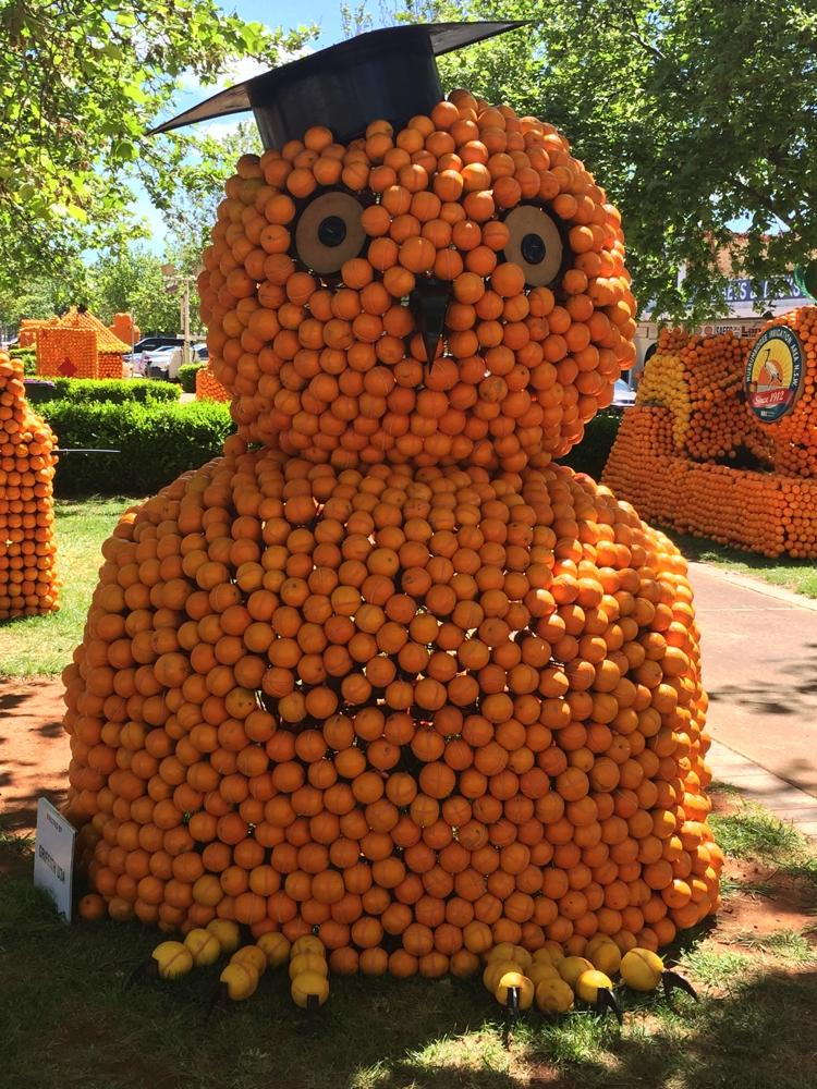 griffith_orange_festival6
