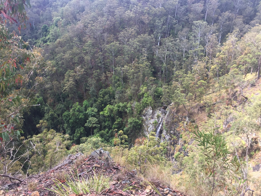 Seeing falls from a distance doesn't really do it for me. Lyrebird Falls.