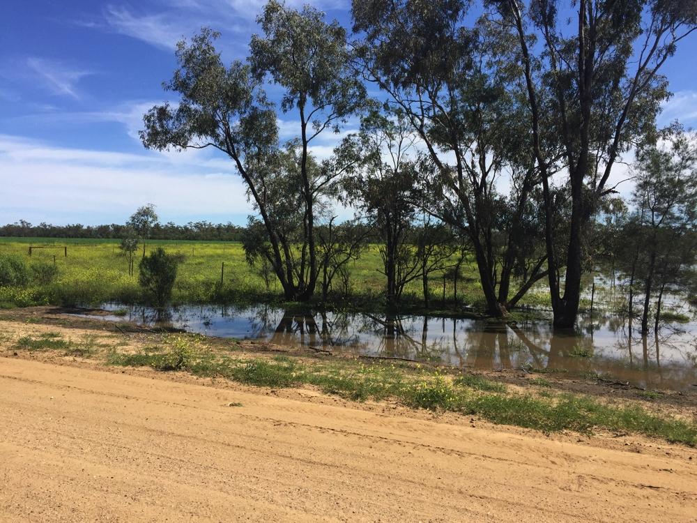 Water, water everywhere, on the Boomi to Mundingi road.
