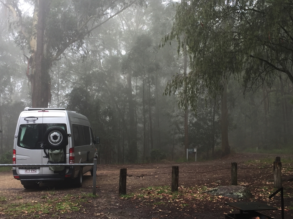 Camping in the clouds. Bangalow Campground, Watagans NP