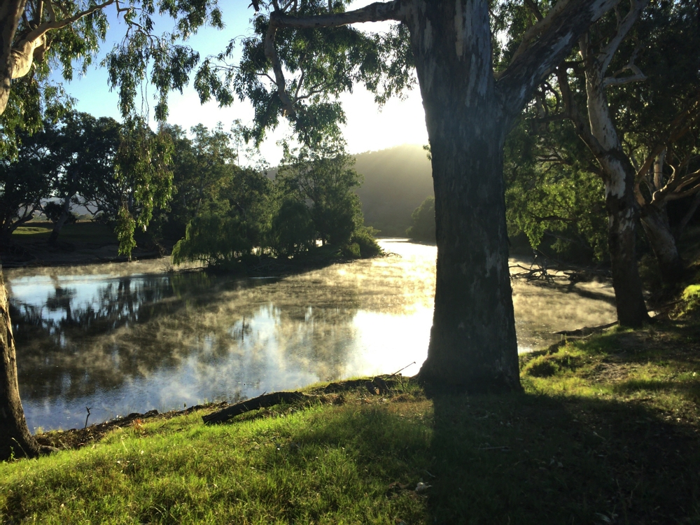 Early morning mist on the Murray River at Gadds Bend campsite.