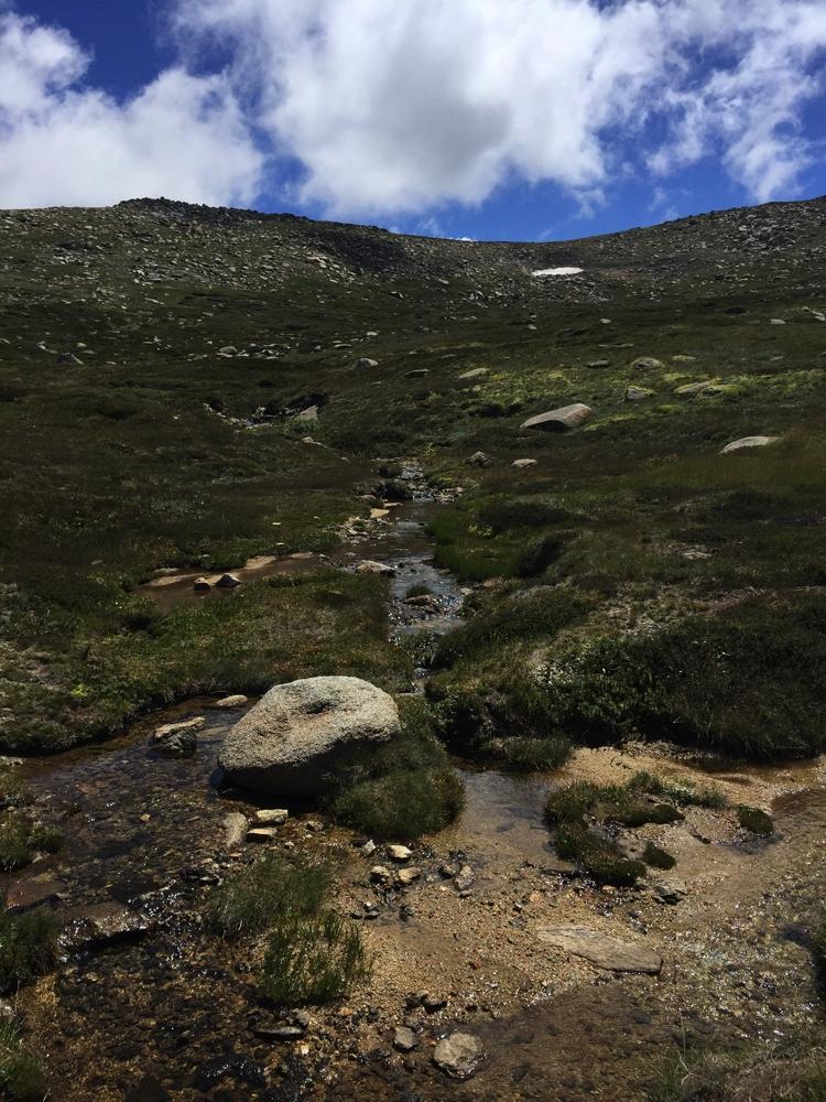 alpine_brooks2