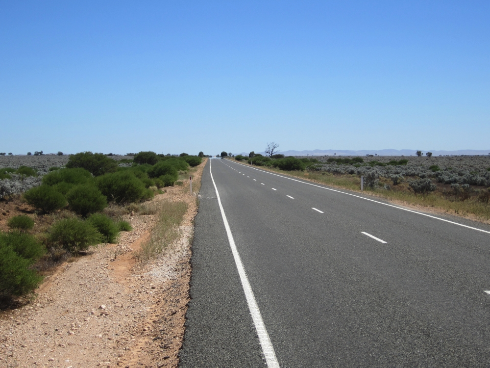 The Goyder Hwy heading to Burra. Saltbush country.