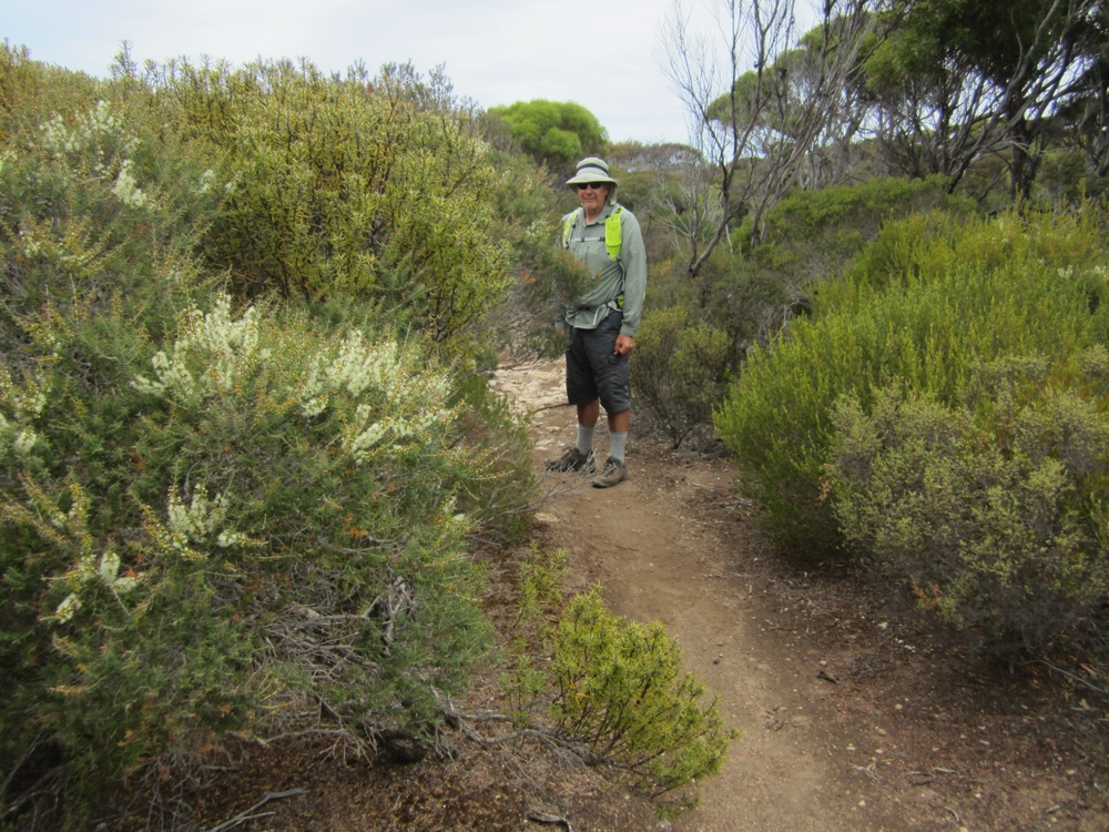 We crossed the peninsula from east coast to west coast. The inland part of the walk have more trees and taller shrubs.
