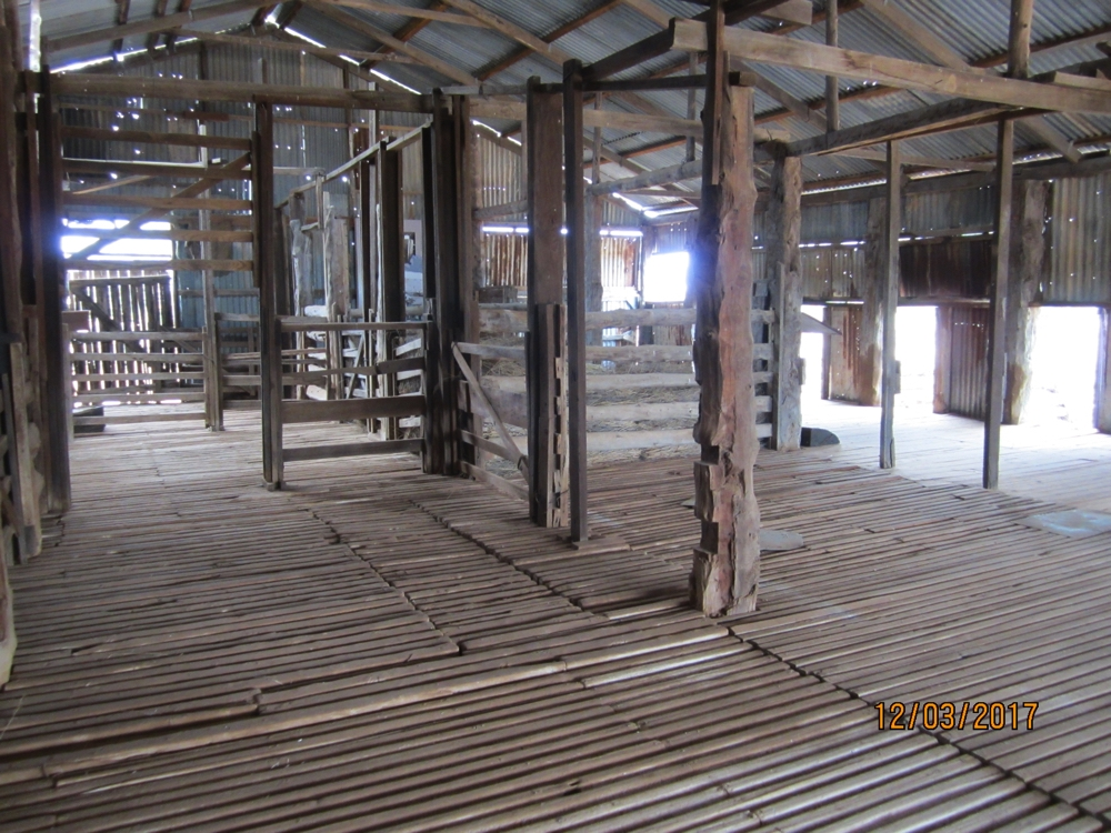 Inside the shearing shed at Mungo Station.