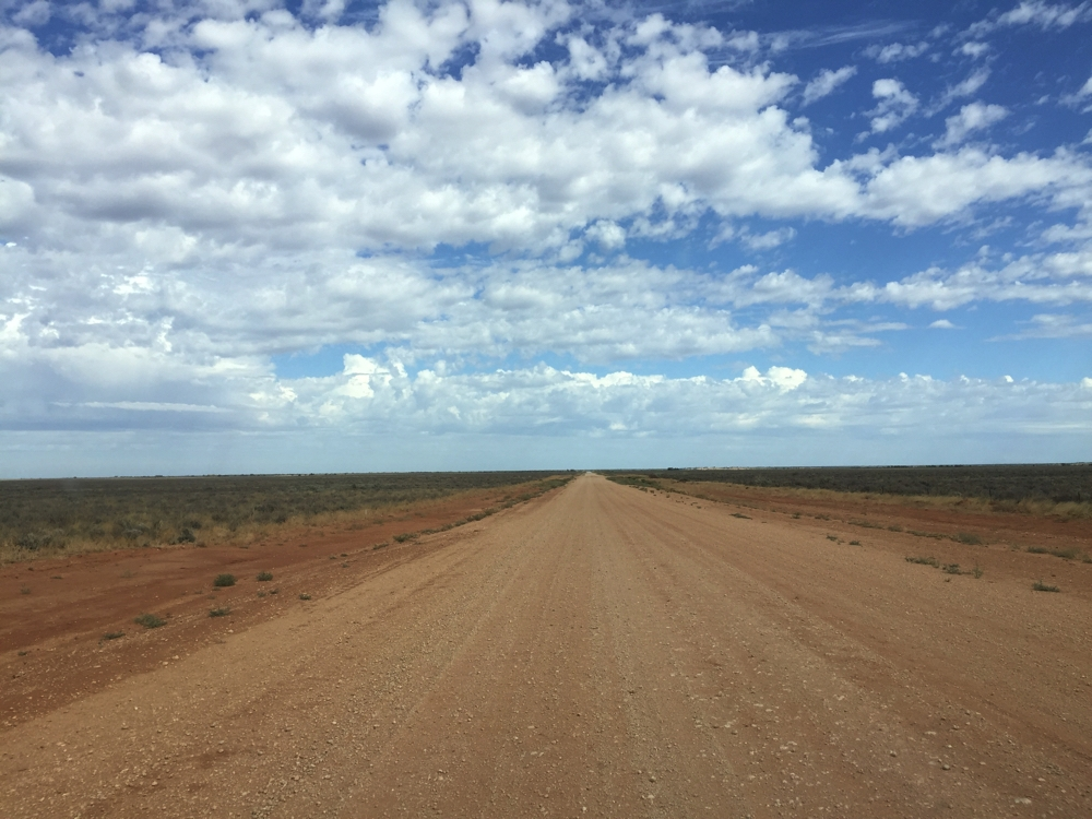The road in to Mungo NP after leaving Balranald.