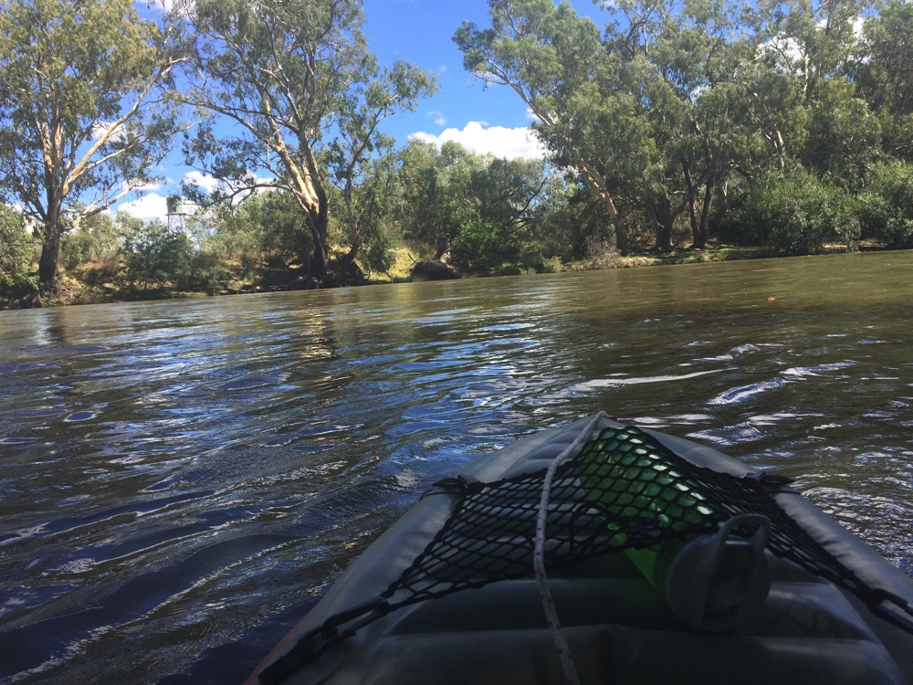 Kayaking on the Murray at Albury Wodonga.