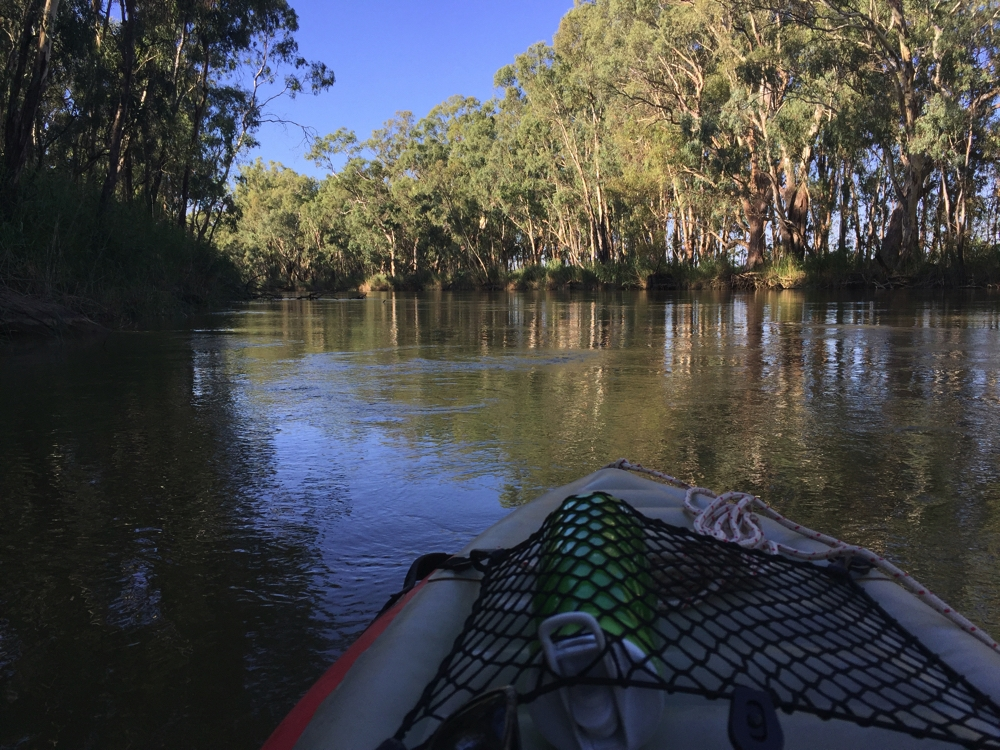 On the Murray River section of Barmah National Park. You can see how narrow the band of trees on the opposite bank is - that's how close Lake Barmah is to the river.