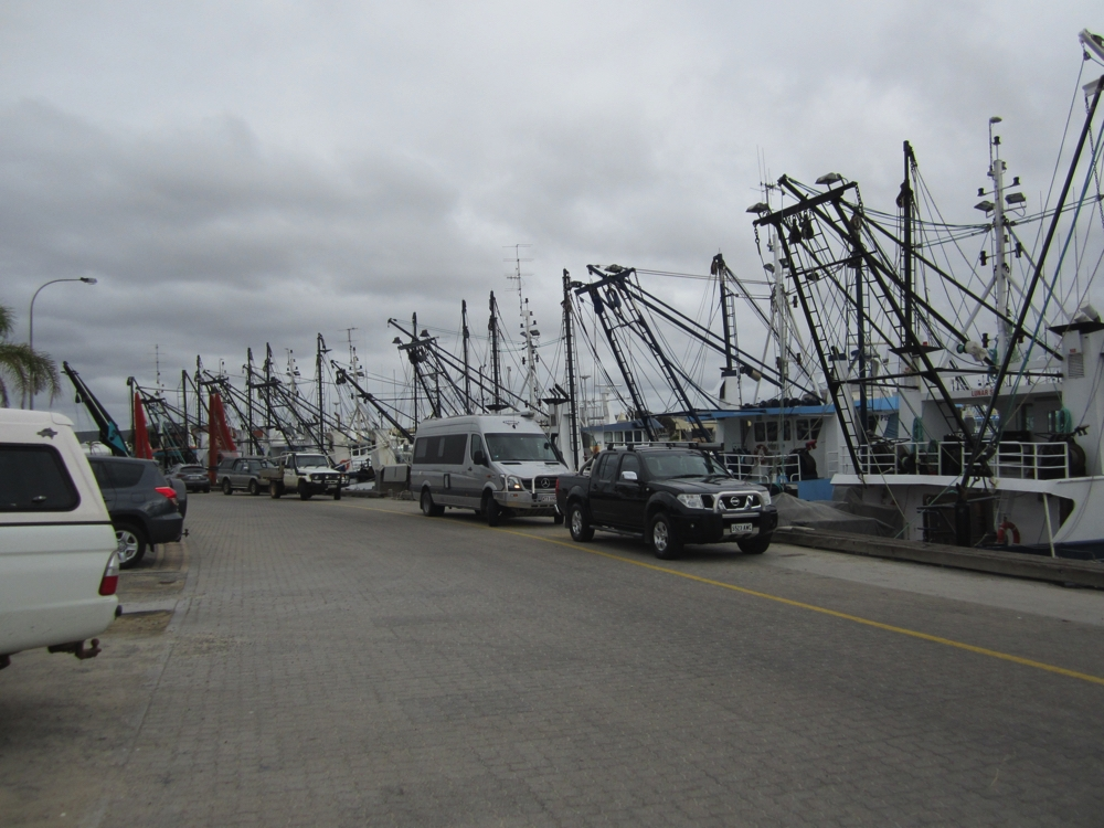 Priscilla (our motorhome) inspecting the fishing fleet at Port Lincoln. Serious problems for fish this lot!