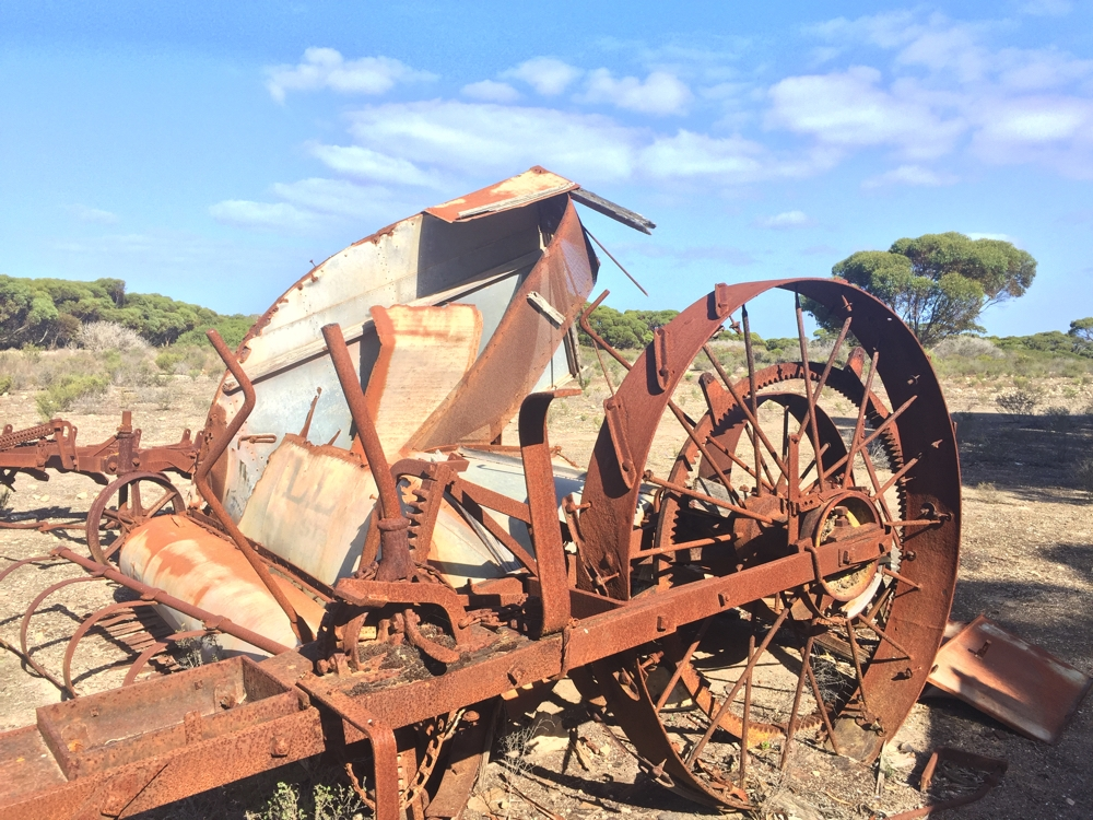 This old farm equipment is by the roadside in Lincoln National Park. Goodness knows when it was last used. Anyway it is, apparently, the site of a geocache.