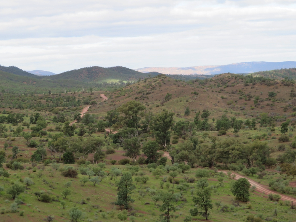 This photo shows a small section of the Moralana Scenic Drive, but not the magnificent mountain ranges on both sides of the road.