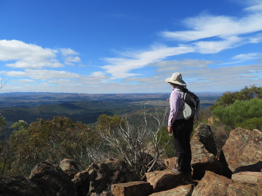 Standing at Tanderra Saddle looking to the outside of the Pound.