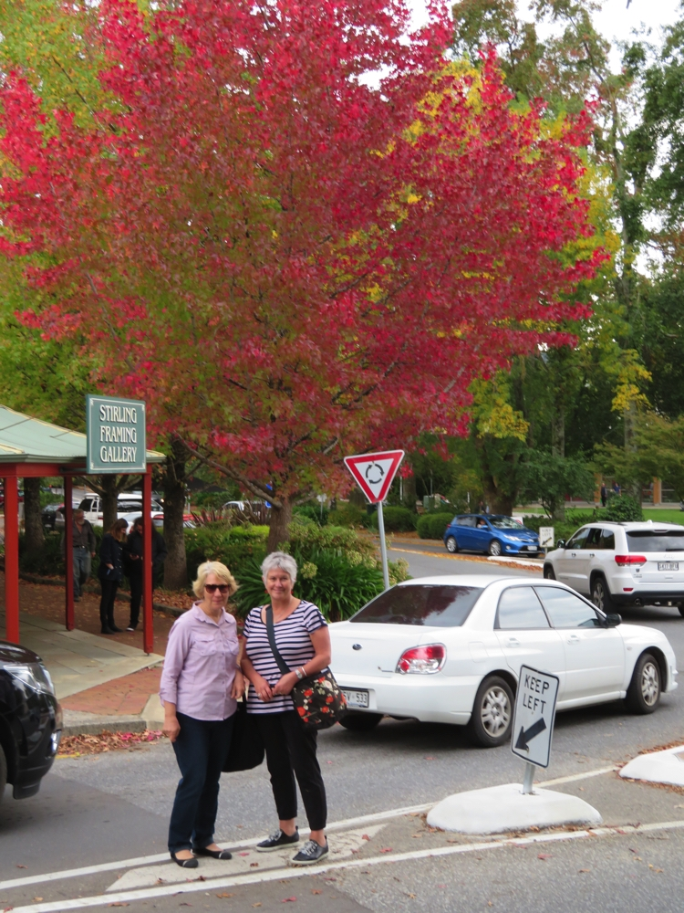 Autumn colours in Stirling in the Adelaide Hills. Terry and Denise