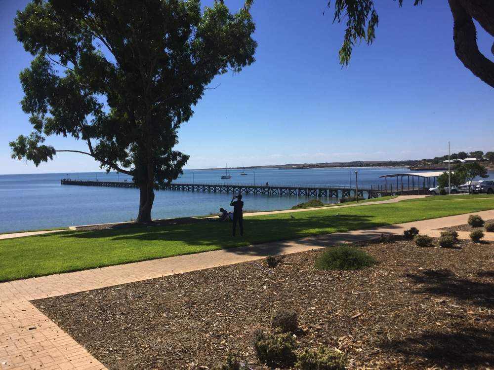 Very pretty foreshore and jetty at Streaky Bay.