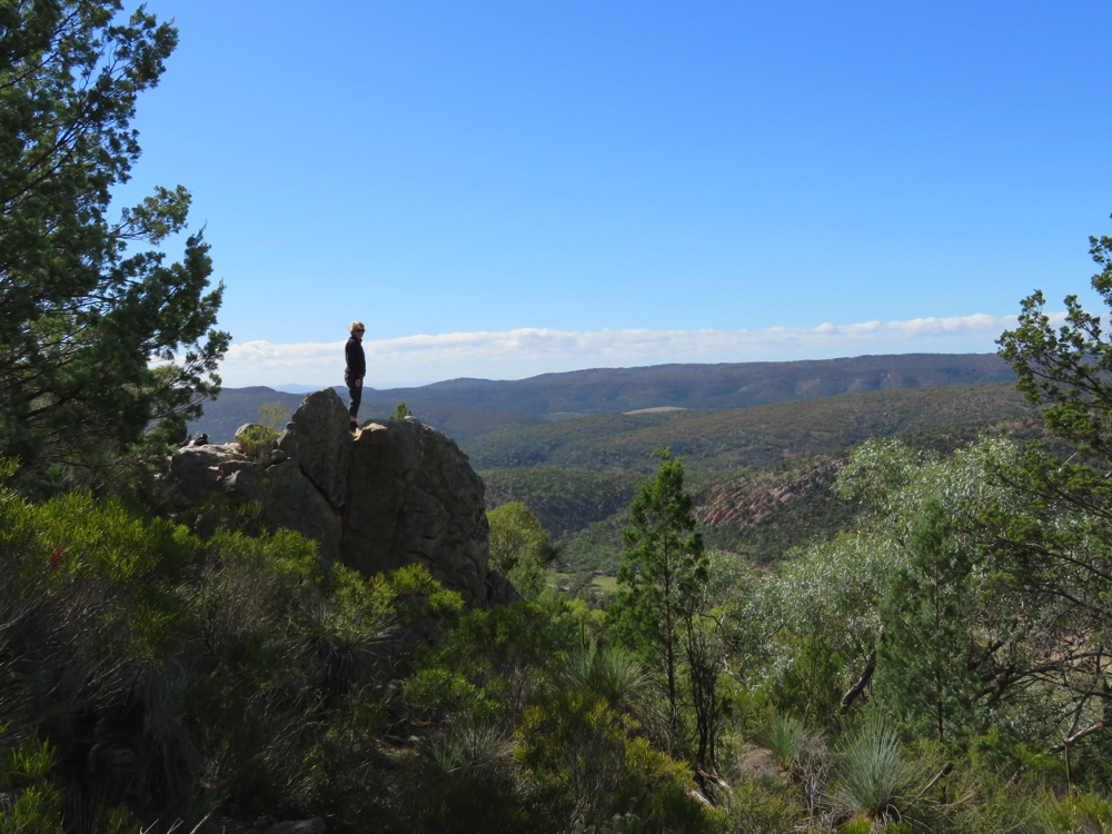 The lookout on the Warren Gorge walk.