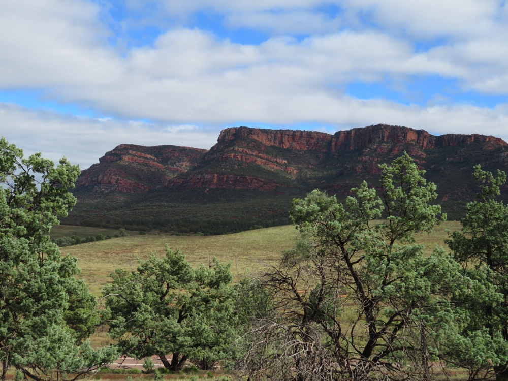 Wilpena Ranges, as seen from a lookout on the way in.