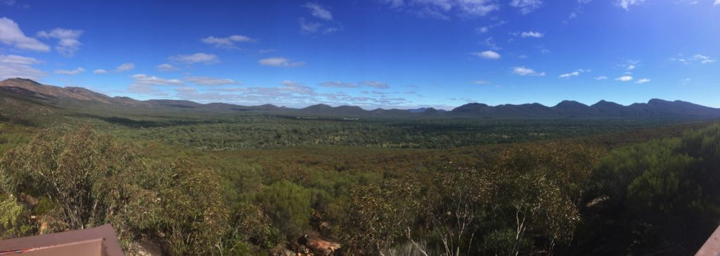Panorama of Wilpena Pound. From here it's easy to see the enclosing mountain range with the flat plain in the middle.