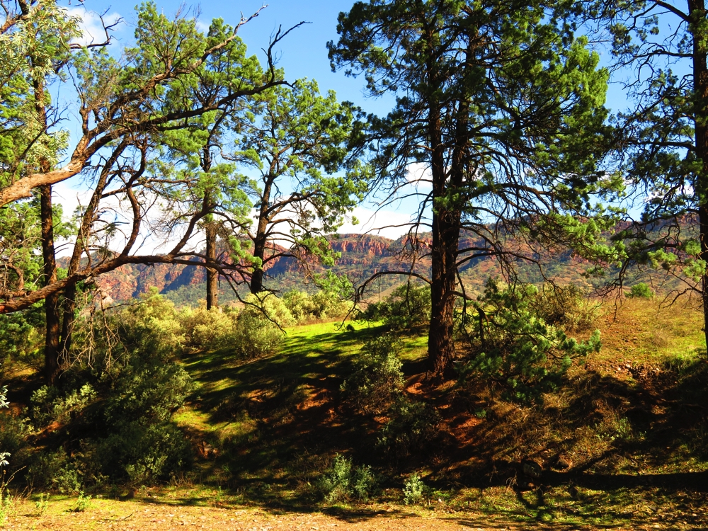The beautiful ranges surrounding our campsite, Aroona.