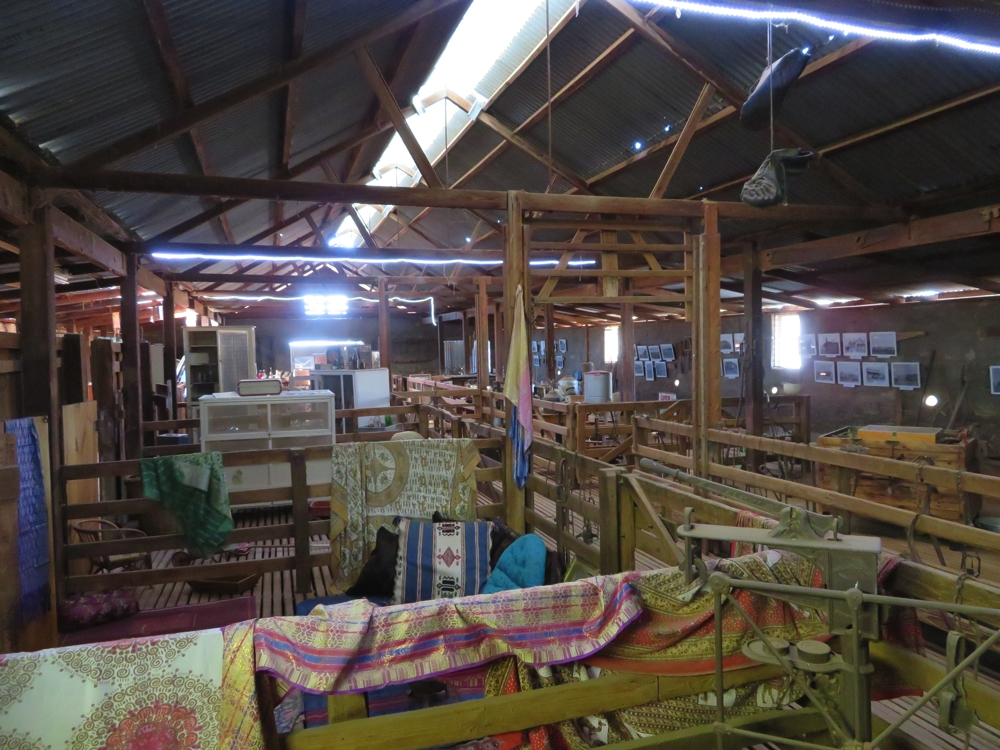 The holding pens in the old shearing shed now display items from a bygone era. Beltana Station.