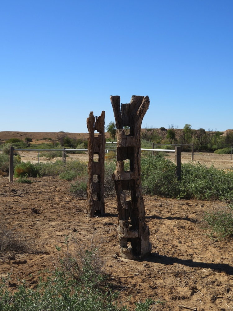 Fencing that formed part of the stockyards. Dalhousie Station.