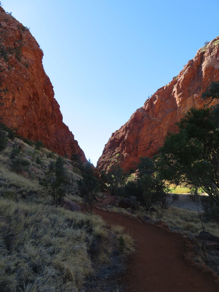 The red path leading through the grasses to the cliffs of Simpsons Gap.