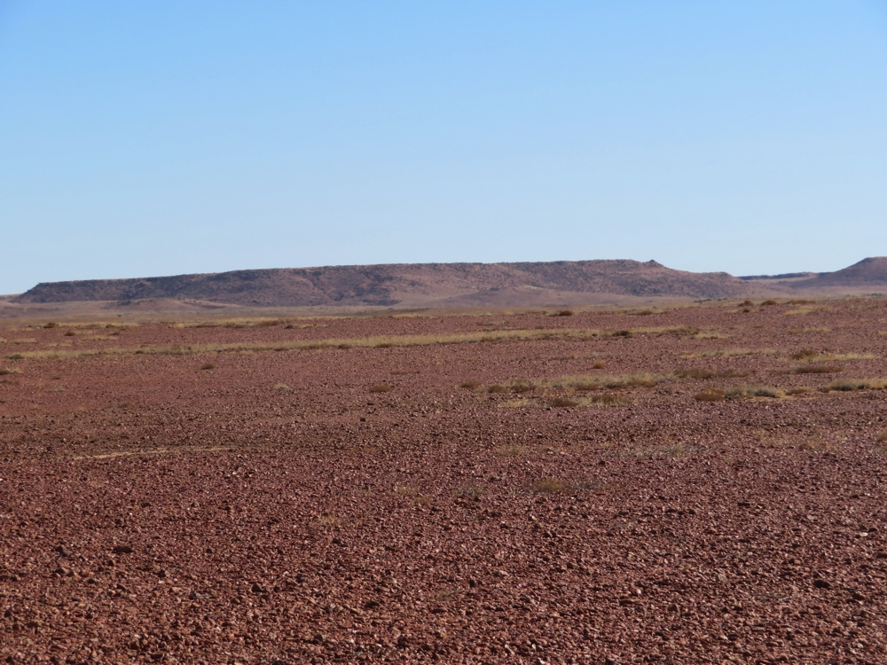 Looking over the gibber plain to the mesa in the background. Witjira National Park.