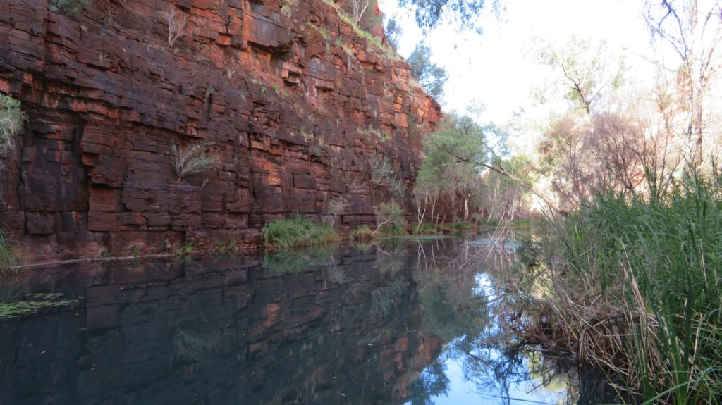 The track through the base of Dales Gorge.