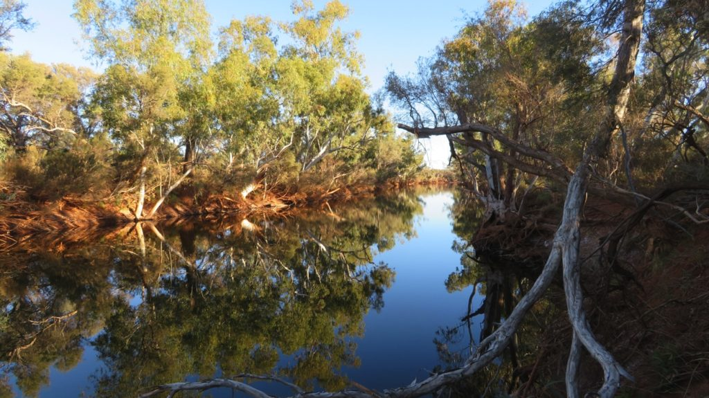 The beautiful Gascoyne River, just near our campsite.
