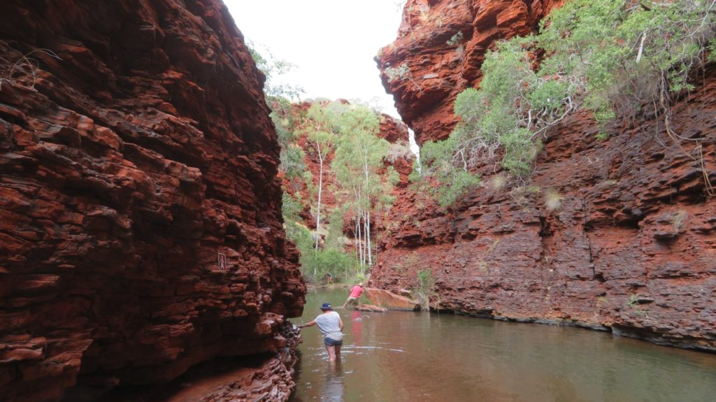 Weano Gorge base walk. Challenging in places - but very beautiful.