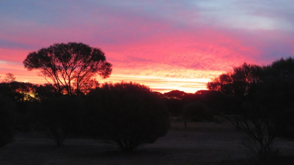 Beautiful sunset from campsite at Mt Magnet.