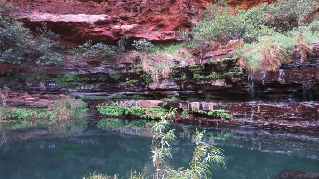 The beautiful, tranquil Circular Pool at the far end of Dales Gorge.