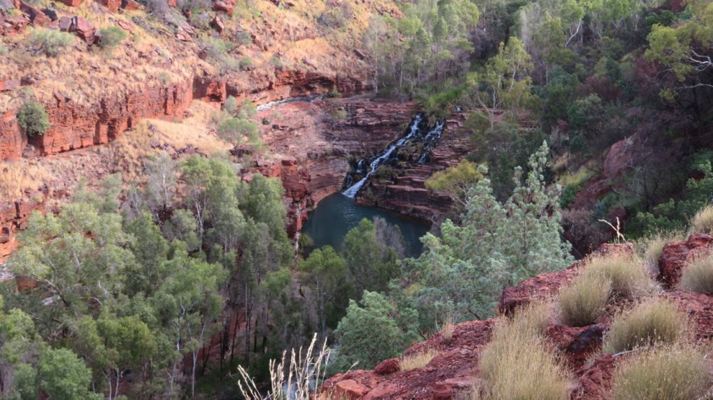 Fortescue Falls and pool, as seen from the walk down into Dales Gorge.