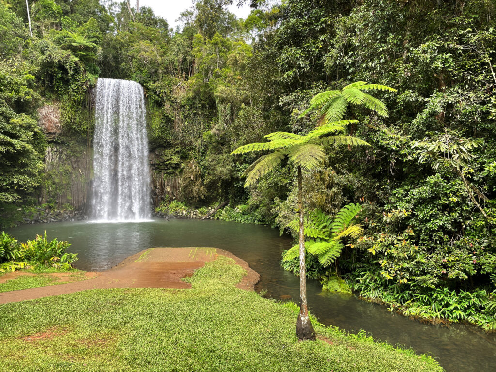 This image has an empty alt attribute; its file name is 05_11_millaa_falls-1024x768.jpg