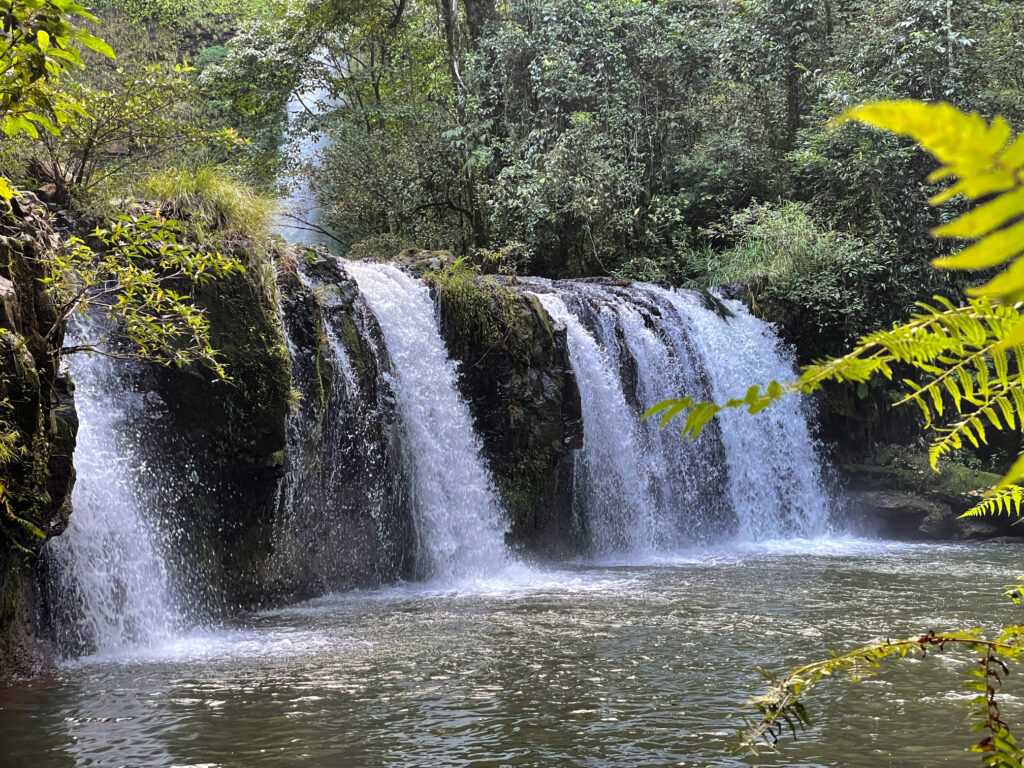 This image has an empty alt attribute; its file name is 05_11_silver-falls-1024x768.jpg